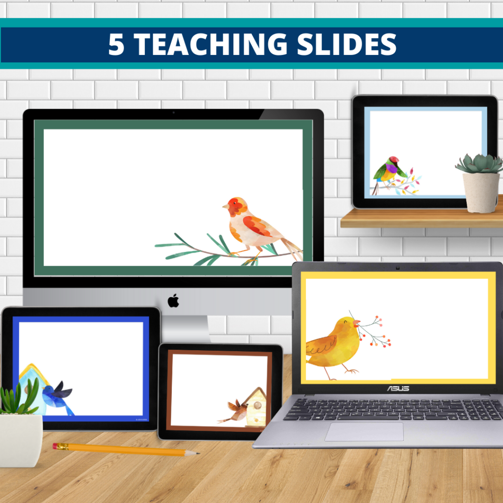 birds theme google classroom slides and powerpoint templates for elementary teachers shown on computers