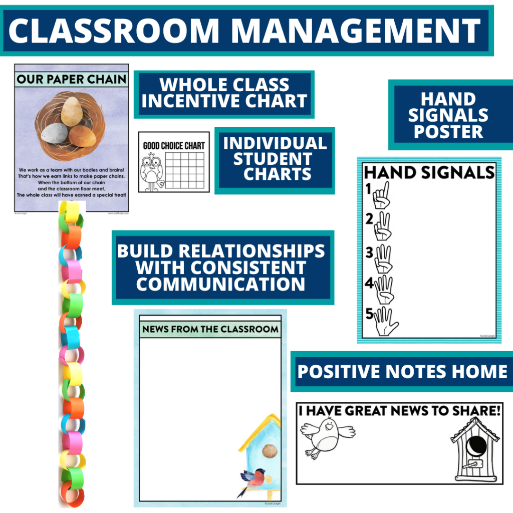birds themed tools for improving student behavior in an elementary classroom