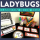 ladybug classroom decor ideas