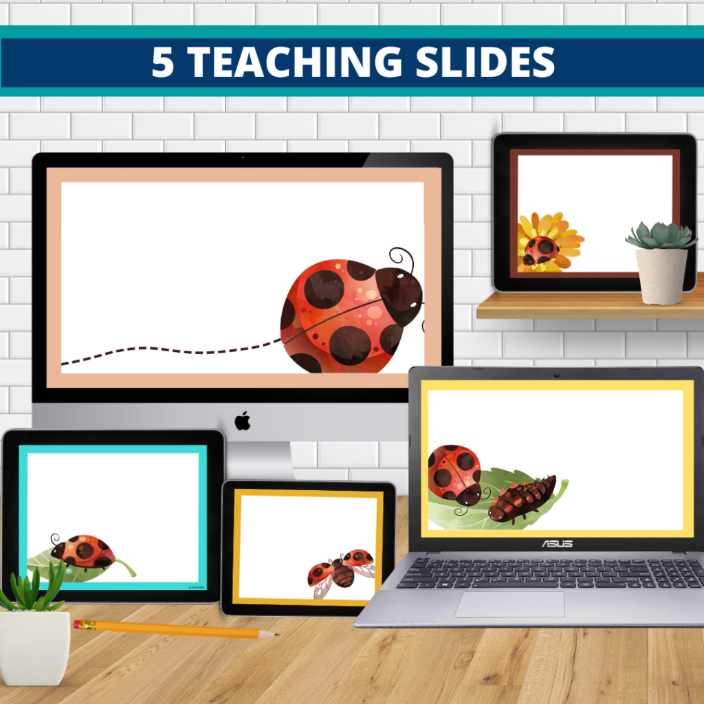 ladybug theme google classroom slides and powerpoint templates for elementary teachers shown on computers