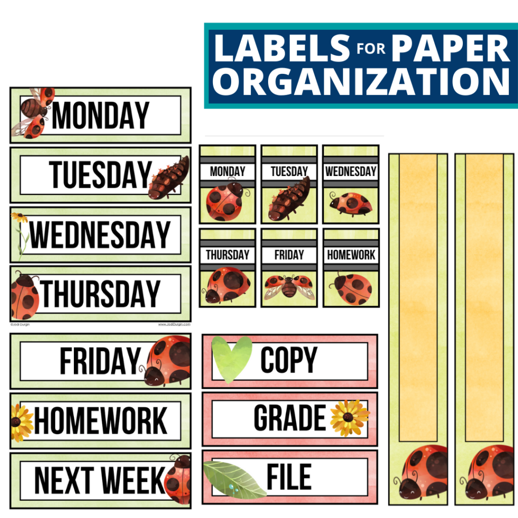 ladybug theme labels for paper organization in the classroom