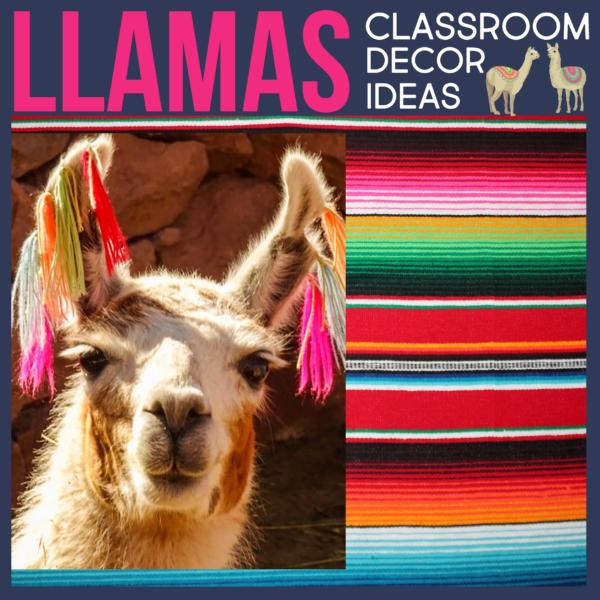 llamas as a classroom theme for elementary teachers