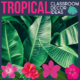 a bright colors tropical classroom theme with decor for elementary teachers