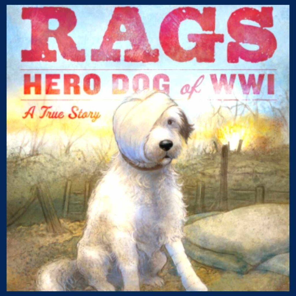Rags book cover